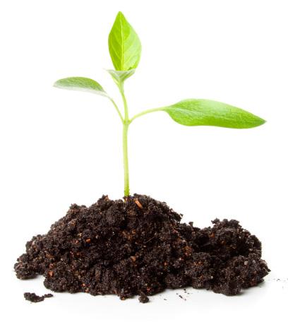 slide-fertiliser
